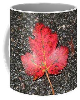Coffee Mug featuring the photograph Red Leaf On Pavement by Barbara McDevitt