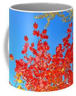 Coffee Mug featuring the photograph Red Leaves by David Lawson