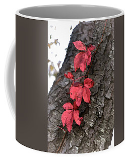 Red Leaves On Bark Coffee Mug