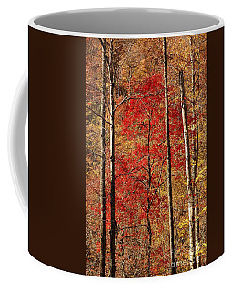 Red Leaves Coffee Mug by Patrick Shupert