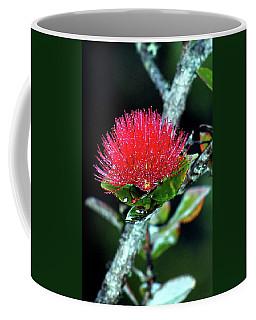 Red Lehua  Kawaiko'olihilihiokalikolehua Coffee Mug by Lehua Pekelo-Stearns