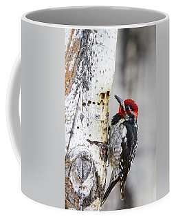 Red-naped Sapsucker Coffee Mug