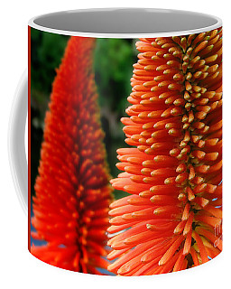 Red-orange Flower Of Eremurus Ruiter-hybride Coffee Mug