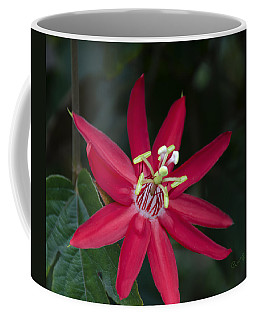 Red Passion Flower Coffee Mug