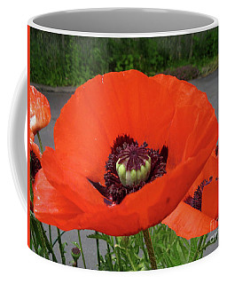 Coffee Mug featuring the photograph Red Poppy by Barbara Griffin
