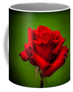 Red Rose Green Background Coffee Mug