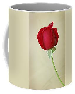 Red Rose On White Coffee Mug by Sandy Keeton