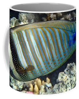 Red Sea Beauty Zebrasoma Coffee Mug