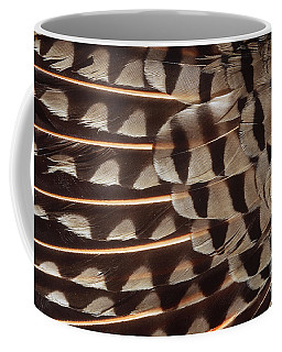 Red-shafted Flicker Feathers Coffee Mug