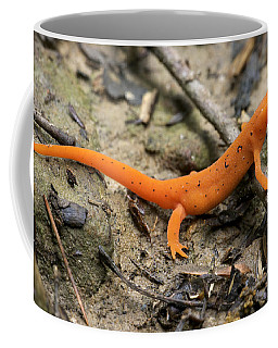 Red-spotted Newt Coffee Mug