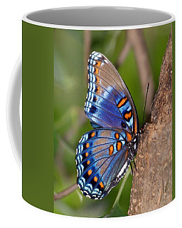 Red Spotted Purple Butterfly Coffee Mug by Sandy Keeton