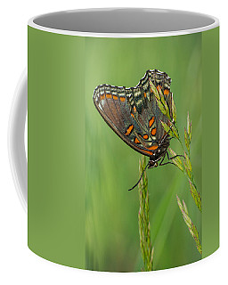 Red-spotted Purple Coffee Mug