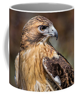Red Tail Hawk Coffee Mug