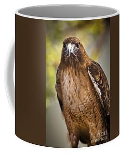 Eyes Of The Raptor Coffee Mug