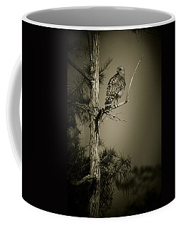 Red Tail Hawk On Loop Road Coffee Mug by Bradley R Youngberg
