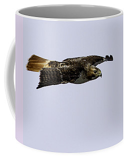 Red-tailed Hawk In Flight 2 Coffee Mug
