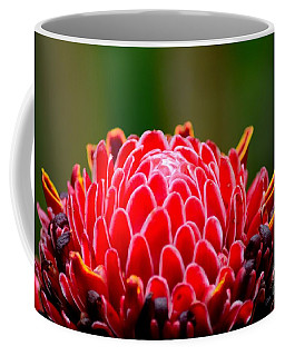Red Torch Ginger Flower Head From Tropics Singapore Coffee Mug