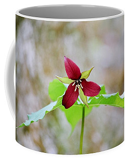 Coffee Mug featuring the photograph Red Trillium by David Porteus