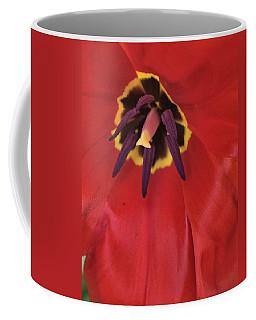 Red Tulip Detail Coffee Mug