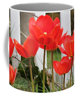Red Tulips At Fence Coffee Mug by Christina Verdgeline