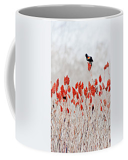 Red Winged Blackbird On Sumac Coffee Mug