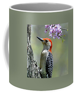 Redbud With Woodpecker Coffee Mug