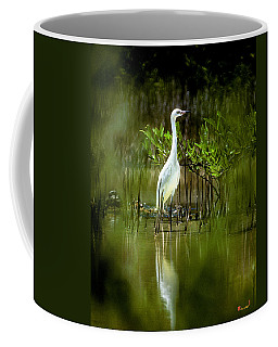 Coffee Mug featuring the photograph Reddish Egret 9c by Gerry Gantt