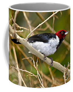Redhead Coffee Mug by Adam Olsen