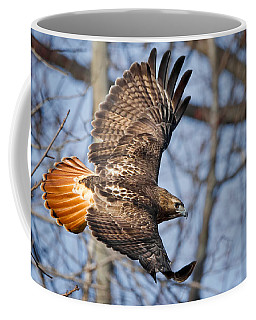 Redtail Hawk Coffee Mug