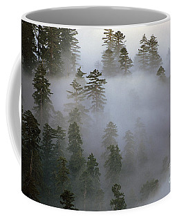 Redwood Creek Overlook With Giant Redwoods  Coffee Mug