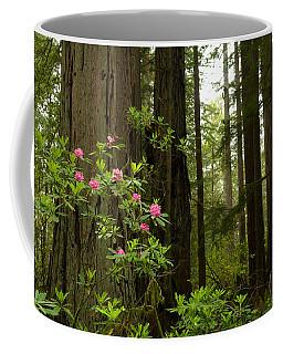 Del Norte County Photographs Coffee Mugs