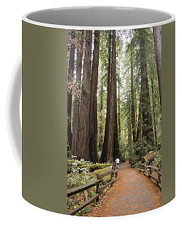 Redwood Trees Coffee Mug