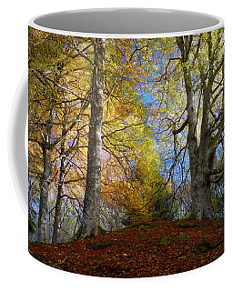 Reelig Forest  Coffee Mug