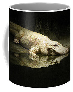 Coffee Mug featuring the photograph Reflection by Beth Vincent