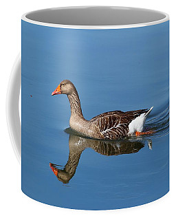 Coffee Mug featuring the photograph Reflection by Lynn Hopwood