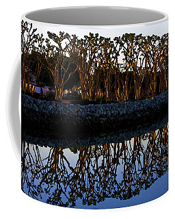 Coffee Mug featuring the photograph Reflections In First Light by Gary Holmes