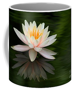 Reflections Of A Water Lily Coffee Mug