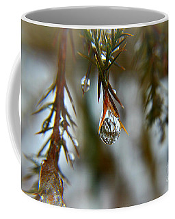 Reflections Of Beauty Coffee Mug