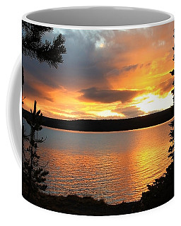 Coffee Mug featuring the photograph Reflections Of Sunset by Athena Mckinzie
