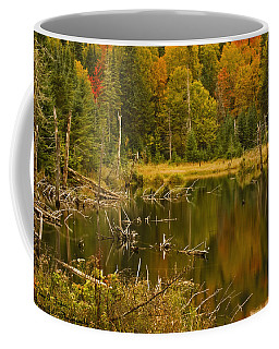 Reflections Of The Fall Coffee Mug