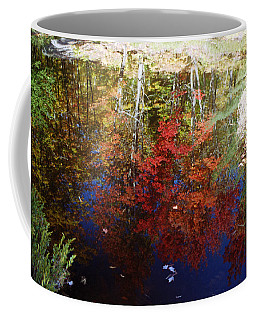 Coffee Mug featuring the photograph Reflections On Algonquin by David Porteus