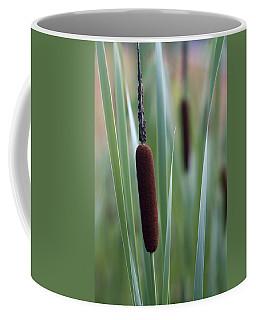 Regal American Cattails Coffee Mug