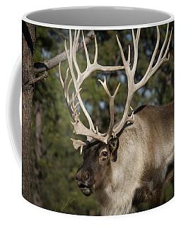 Reindeer With Large Array Of Antlers Coffee Mug
