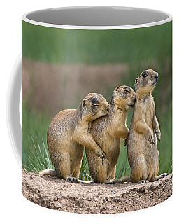 Coffee Mug featuring the photograph Relaxing Utah Prairie Dogs Cynomys Parvidens Wild Utah by Dave Welling