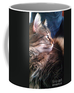 Coffee Mug featuring the photograph Remembering Bo by Jacqueline McReynolds