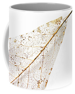 Remnant Leaf Coffee Mug by Ann Horn