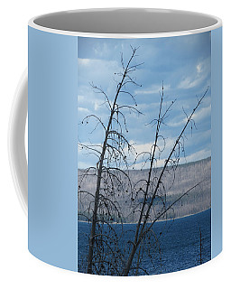 Coffee Mug featuring the photograph Remnants Of The Fire by Laurel Powell