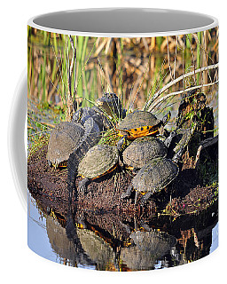 Reptile Refuge Coffee Mug by Al Powell Photography USA