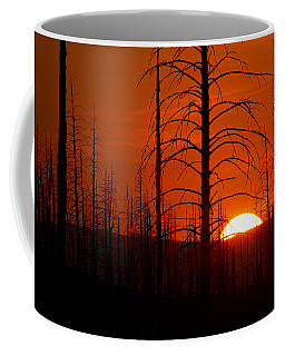 Requiem For A Forest Coffee Mug