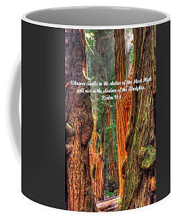 Rest In The Shadow Of The Almighty - Psalm 91.1 - From Sunlight Beams Into The Grove At Muir Woods Coffee Mug